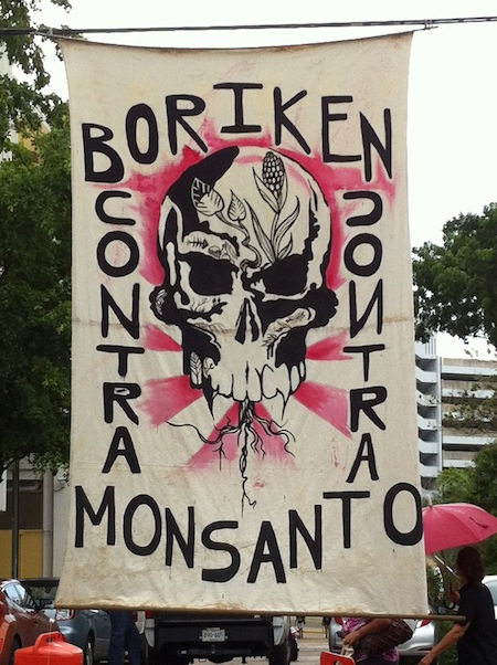 Boriken contra Monsanto